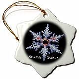 3dRose Lake Zombie Snowflake Porcelain Ornament, 3-Inch