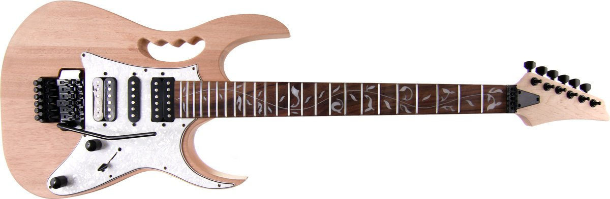 amazon com: alston guitars - diy electric guitar kit | bolt-on | solid  mahogany body | monkey grip: musical instruments