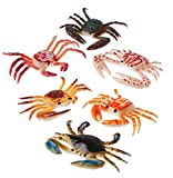 US Toy Plastic Toy Crabs Action Figure (1 Dozen)