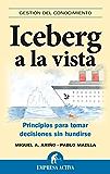 Iceberg a la vista (Gestión del conocimiento)