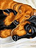 Caroline's Treasures AMB1110GF Dachshund Snuggles Garden Flag, Small, Multicolor Review