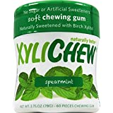 Sugar Free Chewing Gum by XyliChew - 60 pieces, Spearmint
