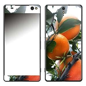 """Motivos Disagu Design Skin para Sony Xperia C5 Ultra: """"Orangenbaum"""""""
