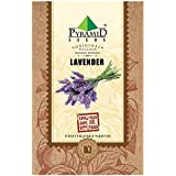 Pyramid Lavender Seeds (Purple, Pack of 400)