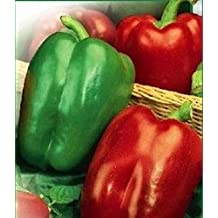 Seeds Sweet Bell Pepper Kaliforniyske Chudo-California Miracle Heirloom Seed