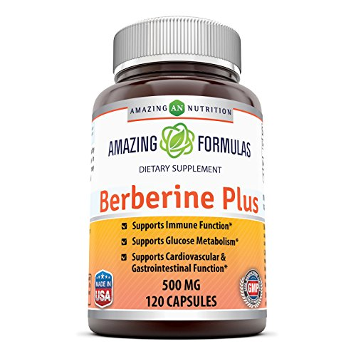 Amazing Nutrition Berberine Plus 500 mg 120 Capsules – Supports immune system – Supports glucose metabolism – Aid in healthy weight management 51I6BClSZgL