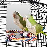 Colorday 7 inch Stainless Steel Bird Mirror with