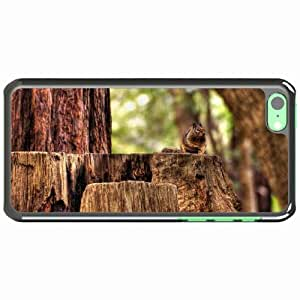 iPhone 5C Black Hardshell Case squirrel hemp sitting animal forest Desin Images Protector Back Cover by runtopwell