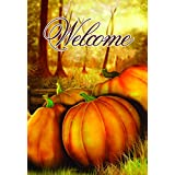 Lantern Hill House Flag Yard Decoration; 28 inches 40 inches (Welcome Pumpkins)