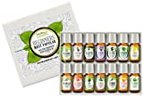 Healing Solutions Beginners Aromatherapy Essential Oil Kit, (Pack of 14/10ml)