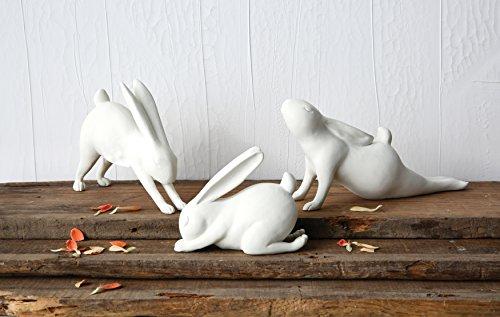 Creative Co-Op DA5609 Bungalow Lane White Resin Arching Yoga Rabbit