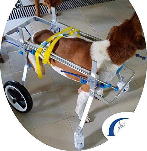 Quaz Four Wheels Adjustable Dog Wheelchair, cart,7 Sizes for