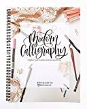 img - for Modern Calligraphy: A Beginner's Guide to Pointed Pen and Brush Pen Lettering book / textbook / text book