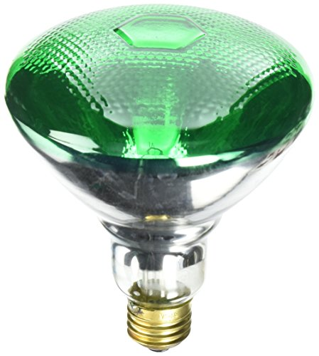 100watt incandescent light bulbs - 4