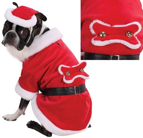 Zack and Zoey Santa Paws Costume Xsm [Misc.] [Misc.], My Pet Supplies