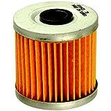 FRAM CH6070 Oil Filter for Motorcycles
