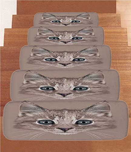 iPrint Non-Slip Carpets Stair Treads,Animal,Portrait of Domestic Cat Cute Face Baby Kitten Pet Whiskers Fluffy Feline,Umber Brown Bluegrey,(Set of 5) 8.6''x27.5'' by iPrint