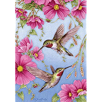 Toland Home Garden Hummingbirds w/Pink House Flag 107158