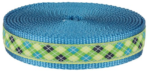 3/4 Inch Lime Green and Blue Argyle Ribbon on Ice Blue Nylon Webbing Closeout, 5 Yards (Argyle Grosgrain Ribbon)