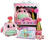 Whooo's Having a Birthday Gift Set for Girls- Book, Owl, and Keepsake Hat with Changeable Stickers for Years 1-9. Perfect First Birthday and Toddler Years 1 2 3 4 5