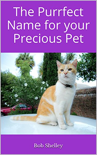 The Purrfect Name For Your Precious Pet Cute And Clever Names For