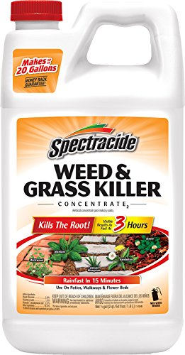 Spectracide Weed & Grass Killer Concentrate2, 64-Ounce, 6-Pa