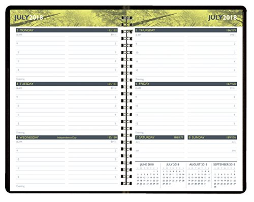 Hammond & Stephens Academic Weekly Appointment Planner, July 2018 to July 2019