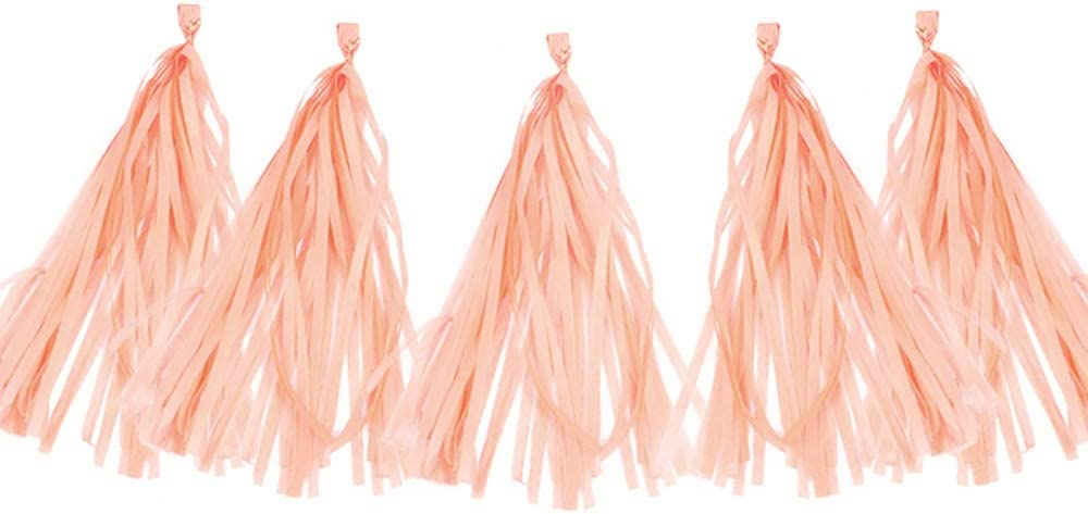 AimtoHome 20PCS Shiny Tassel Garland Tissue Paper Tassel Banner,Table Decor,Tassels Party Decor Supplies for Wedding,Birthday,Bridal/Baby Shower,Anniversary,DIY Kits - (Peach Color)
