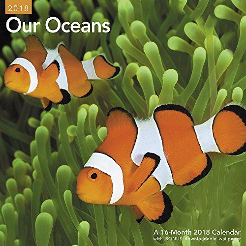 2018 Our Oceans Wall Calendar (Mead)