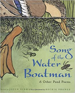 Image result for song of the water boatman