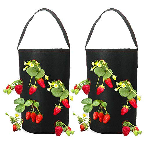 Hanging Strawberry Planter - WOOCH Hanging Strawberry Planter for Strawberry Bare Root Plants (Roots not Included) Felt Material 2 Pack