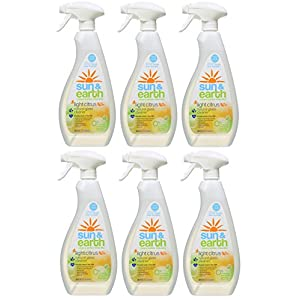 Natural Glass Cleaner - Light Citrus Scent - Non-Toxic, Plant-Based, Hypoallergenic - 22 Ounce Spray Bottles (Pack of 6)