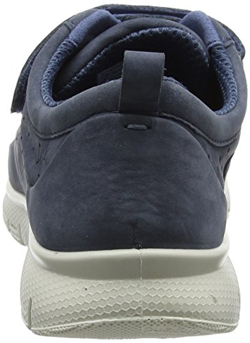 Hotter Women's Kinetic Trainers Blue (Blue River) no7iF