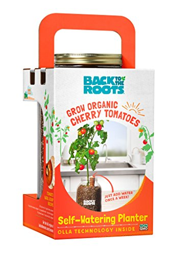 Back to the Roots Grow Your Own Organic Cherry Tomato Kit. Self-Watering Tomato Pepper Planter. DIY Indoor Garden. Grow Edible Tomatoes for Gourmet Cooking