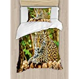 Zoo Duvet Cover Set by Ambesonne, Jaguar on Wood Floor Wildlife Animals Feline Big Cat Mammal Predator Resting, 2 Piece Bedding Set with 1 Pillow Sham, Twin / Twin XL Size, Green Yellow Brown