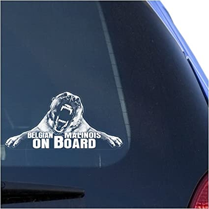 Belgian malinois clear vinyl decal sticker for window mechelaar shepherd dog warning guard sign art