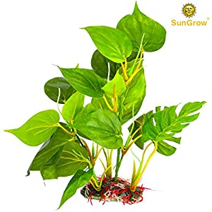 """SunGrow Plastic Leaf Plant for Freshwater or Marine Tanks - 10"""" Ultra-Realistic Fake Plant - Blunt Leaf Edges Protect Fish Fins - Hiding spot for Fish, Reptiles, Amphibians - Looks Perfect in 10 gal 70"""