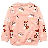 Toddler Girl Cotton Cute Cartoon Pink Sweatshirt The Hedgehog and The Fox 2-7T