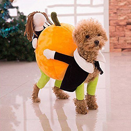 Funny Carrying Pumpkin Dog Cat Pet Clothes Costume Fancy Puppy Apparel Jacket, with Cuddly Soft Plush Better to Keep Warm in Winter (XS) ()
