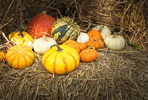 Leyiyi 5x3ft Happy Thanksgiving Day Backdrop Pumpkin Harvest Rural Autumn Party Banner Hay Stock Straw Piles Sunlight Photo Background Western Cowboy Adults Portrait Studio Prop Vinyl Wallpaper -