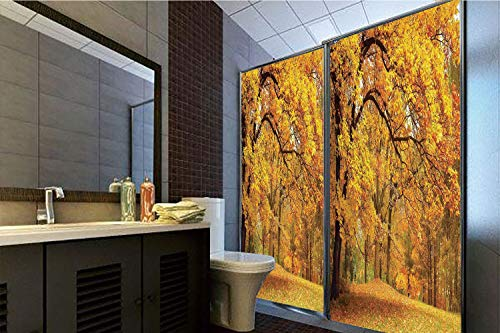Horrisophie dodo 3D Privacy Window Film No Glue,Farm House Decor,Gold Fall Scenery with Pale Maple Leaves in The Forest November Season Woodlands,Orange Brown,47.24