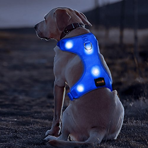 BSEEN LED Dog Harness LED Night Safety Dog Vest Harness USB Rechargeable Soft Mesh Vest with Adjustable Belt Padded Lightweight Collar for Large, Medium and Small Dogs(Large, Blue)