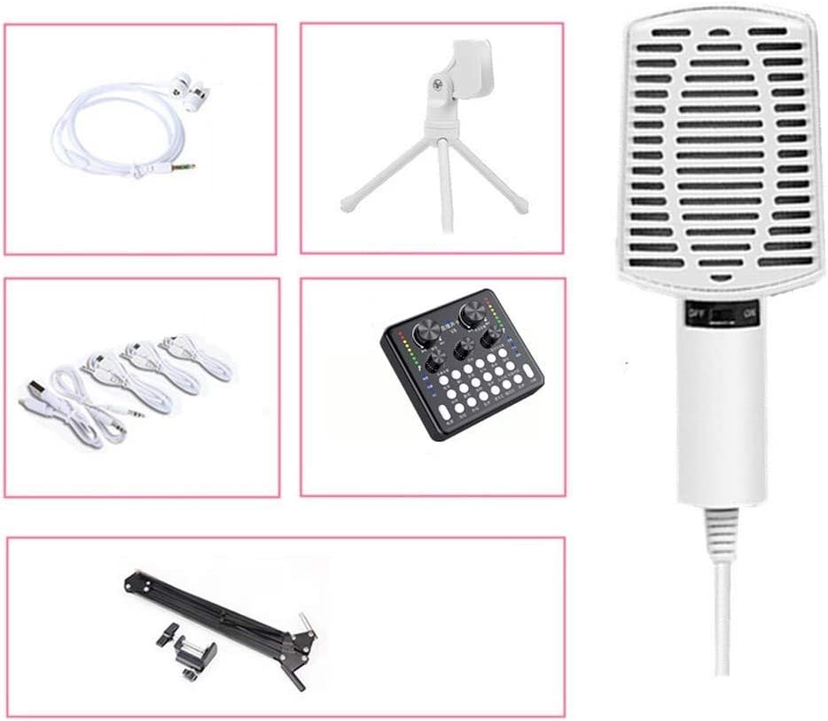 LEZDPP Computer Microphone Mobile Phone Universal Sound Card Set Live Broadcast Device Anchor Recording Microphone Full Set Size : Professional Four-Piece Suit