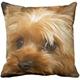 DECORLUTION Wait For Mom Love Haley Dog Yorkie Terrier Throw Pillow Cases Personalized 18x18 Inch Square Cotton Decorative Throw Pillow Case Decor Cushion Covers