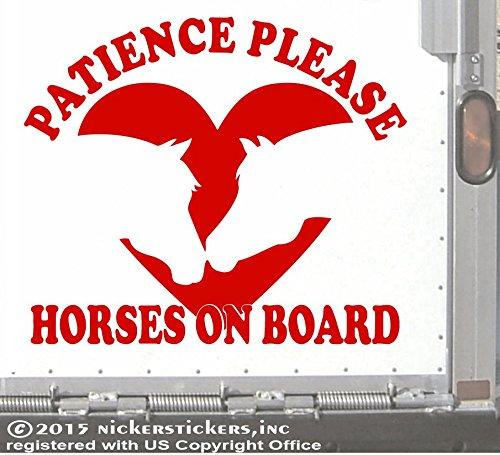 Patience Please Horses on Board | 13.5