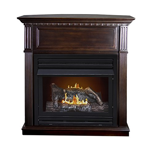 Convertible Direct Vent Fireplace - 1