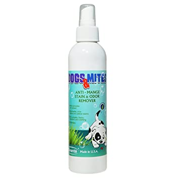 demodex Mange Tratamiento perros N mitesâ ® – Anti Mange Spray para alfombras, tapicería,. Pasa el ...