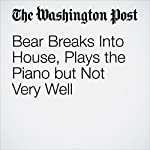 Bear Breaks Into House, Plays the Piano but Not Very Well | Karin Brulliard