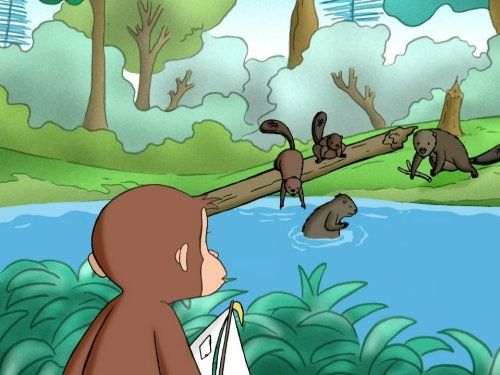Curious George and the Dam Builders/Curious George