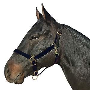 Intrepid International Safety Breakaway Horse Halters with Leather Crown, Black